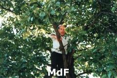 1_MdF_21